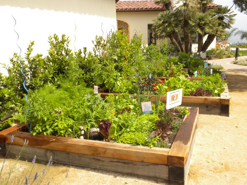 Landscaping Timber Garden Beds : How to build a raised bed ? home grown edible landscapes