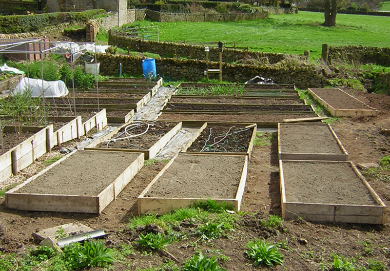 building garden beds. terraced building garden beds