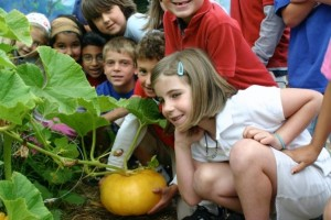 Kids in pumpkin garden